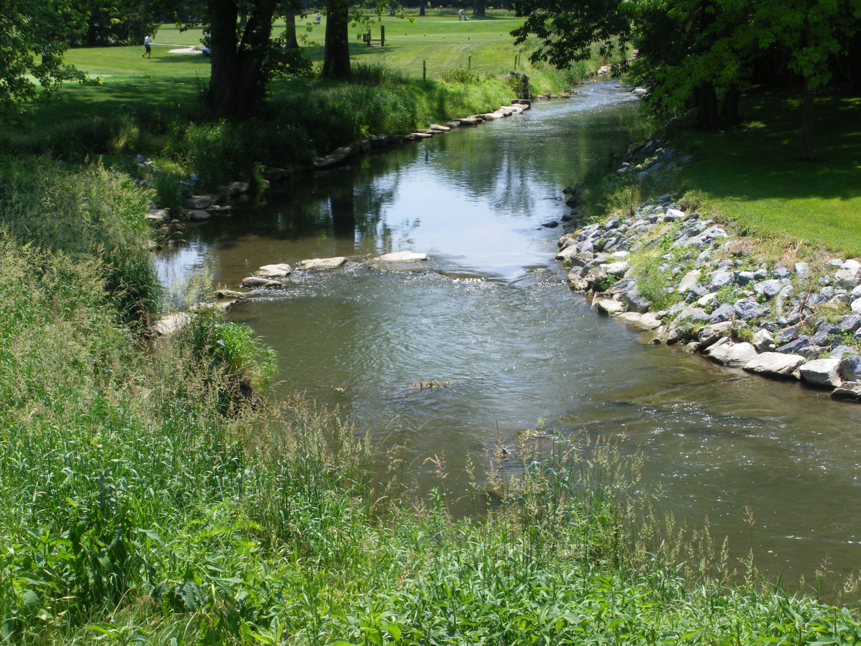lcwa stream restoration